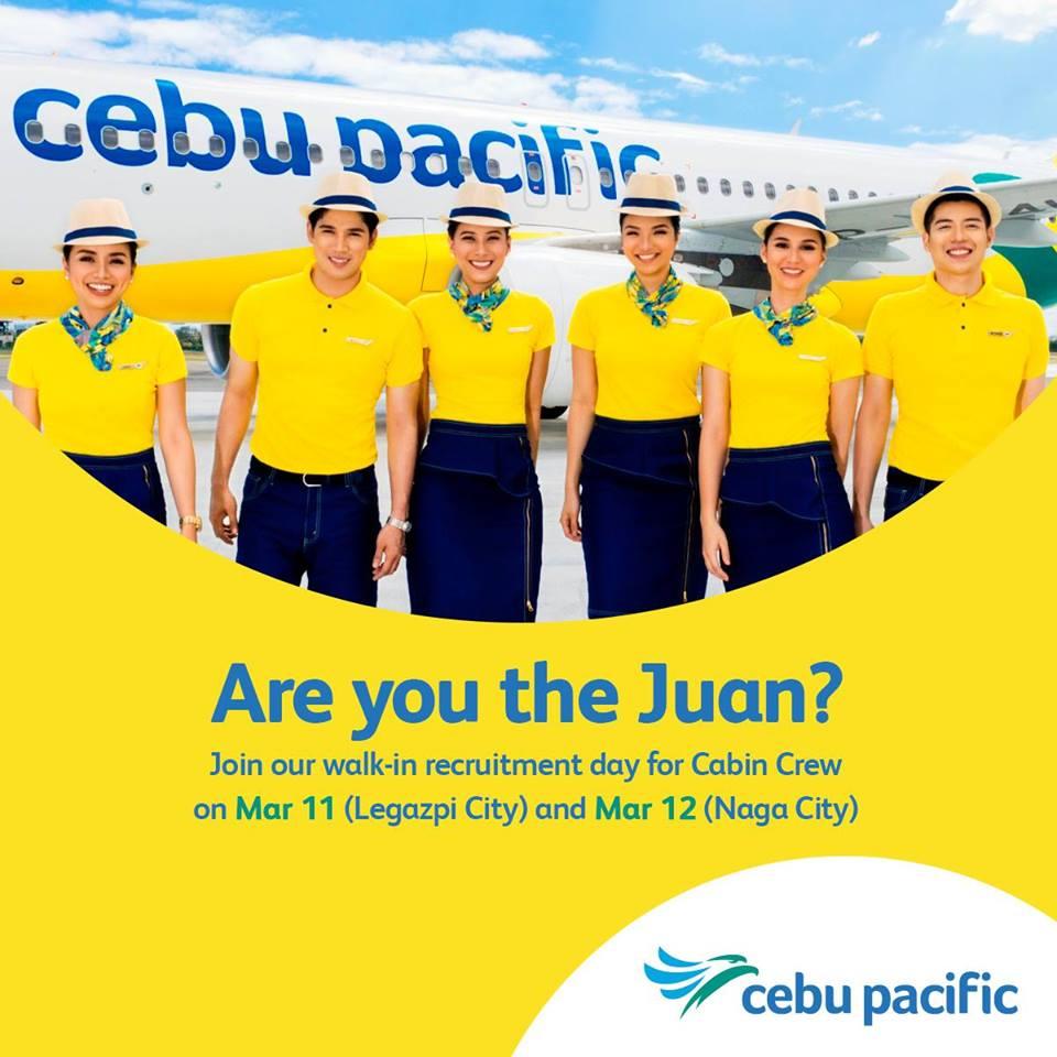 cebu pacific air cabin crew hiring - legazpi city & naga city - piso